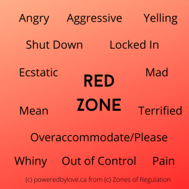 Red Zone: Angry, Aggreesive, Yelling, Shut Down, Locked In, Ecstatic, Mad, Mean, Terrified, Overaccomodate/Please, Whiny, Out of Control, Pain